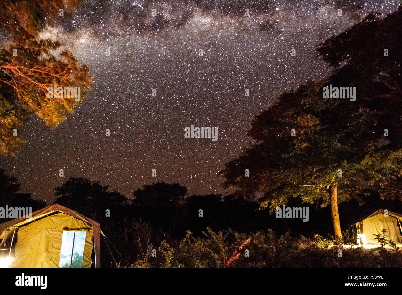 Night skies over Camp 9, Chobe National Park, Botswana - Stock Image