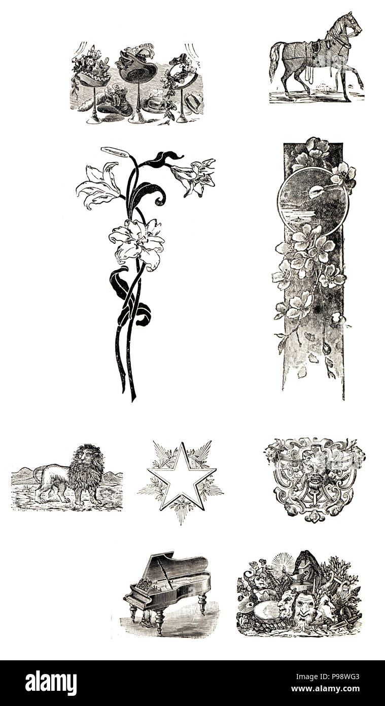 Old ilustrations from the 1900s. Art Nouveau style. - Stock Image