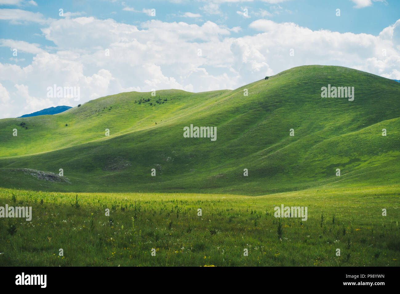 rolling green grassy hills in Europe, reminiscent of the famous Windows XP desktop background Stock Photo