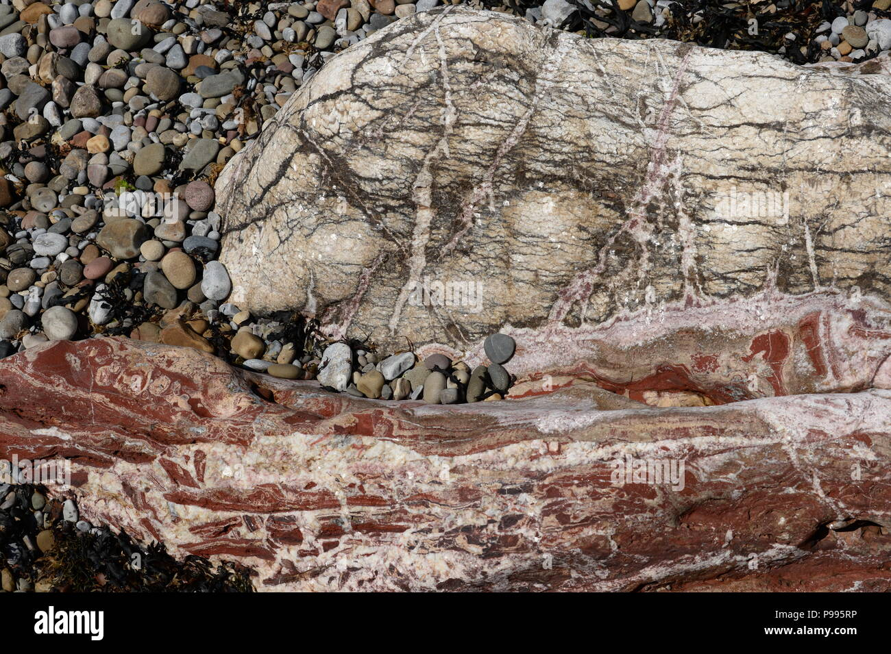 Calcite and red haematite associated with hydro thermal solutions from underlying old red sand stone on Mumbles Head  & mined by the Romans Stock Photo