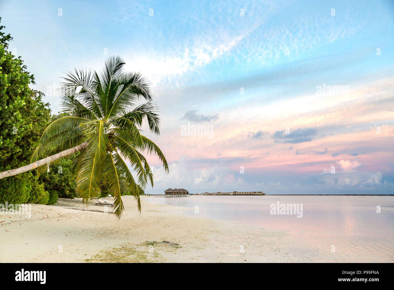 Tropical Beach Sunset Colorful Sky And Soft Waves Calming Landscape On A