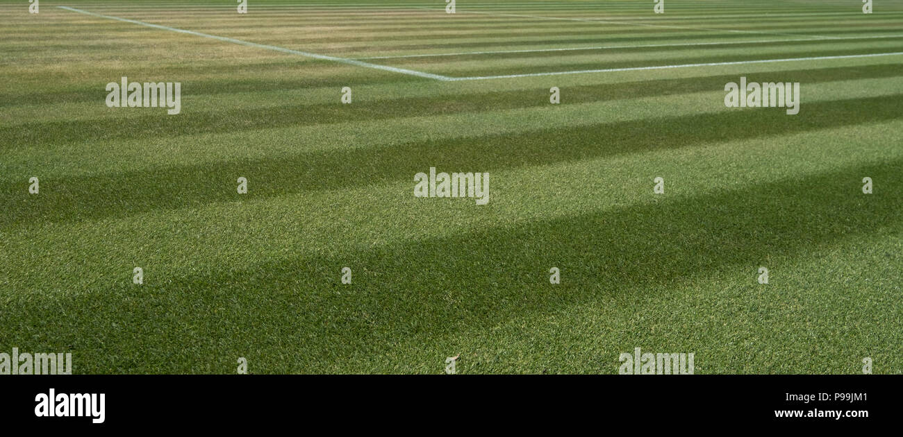 Close up of well manicured grass tennis court at Wimbledon, photographed during the 2018 championships. - Stock Image