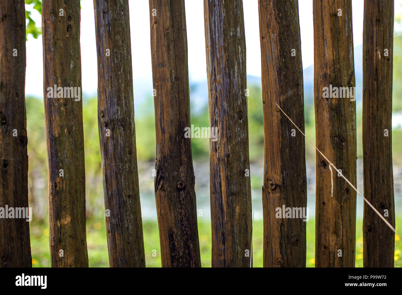 Close up photo - old wooden fence posts poles, with blurred spring country and river in background. - Stock Image