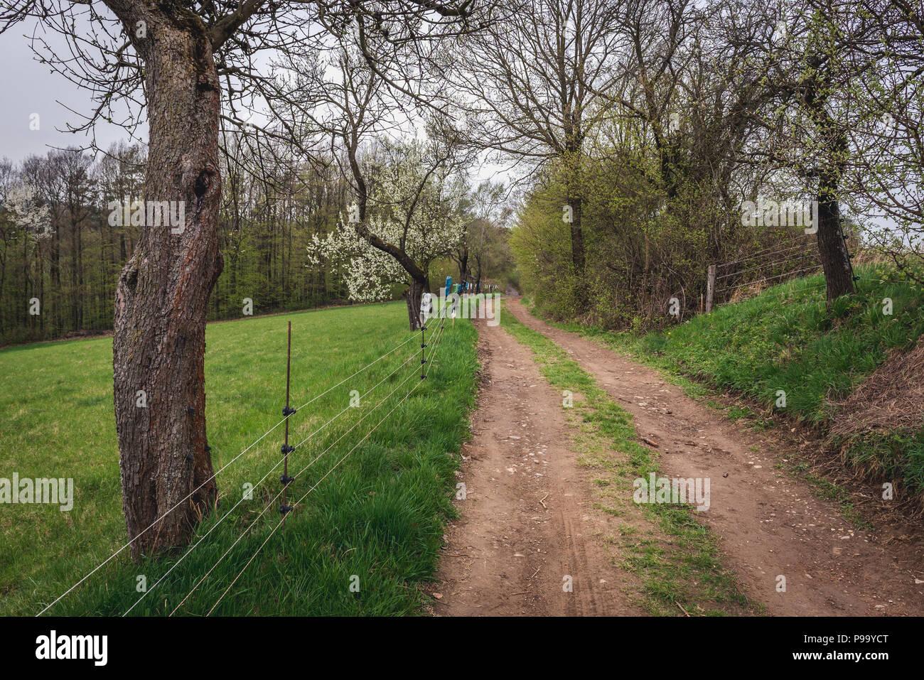 Country road near Jaroslavice district of Zlin city in Czech Republic - Stock Image