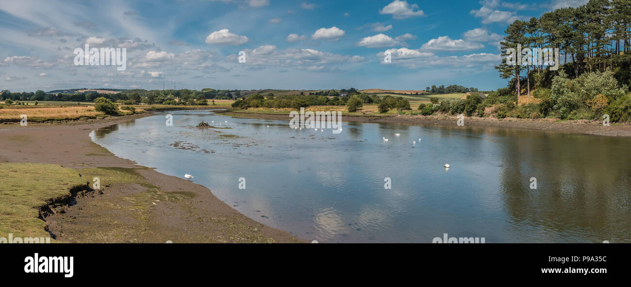 Northumberland Coast AONB panoramic landscape, swans on the river Aln at Alnmouth in summer - Stock Image