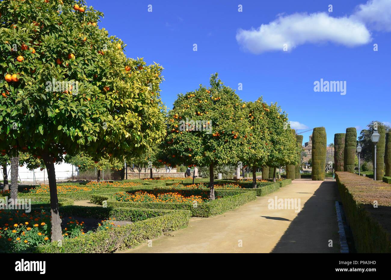Landscaped gardens at Alcázar de los Reyes Cristianos in Cordoba, Spain - Stock Image