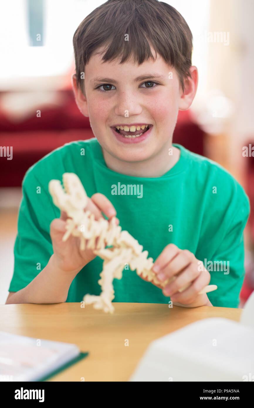 Portrait Of Boy Making Model Dinosaur At Home - Stock Image