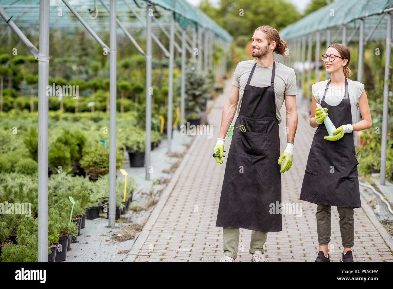 Young couple of workers in uniform supervising plants in the greenhouse - Stock Image