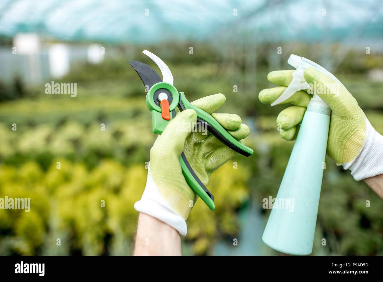 Tools for gardening - Stock Image