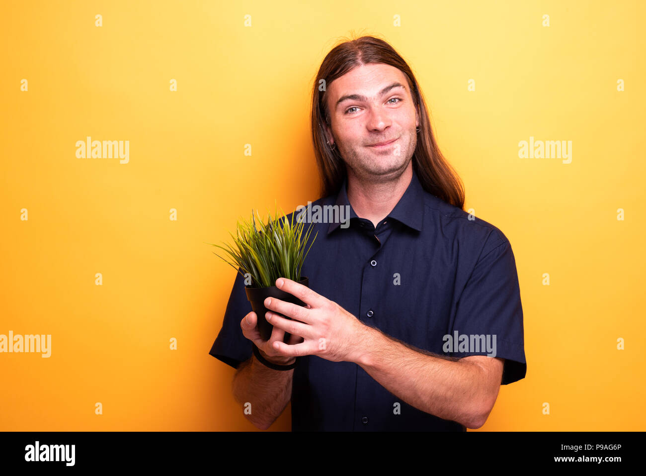 Man showing apartment plant in a pot - Stock Image
