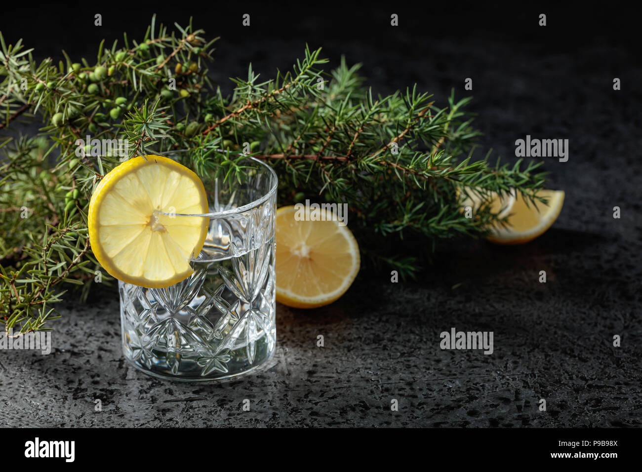 Cocktail gin , tonic with slices of lemon and a sprig of juniper . - Stock Image