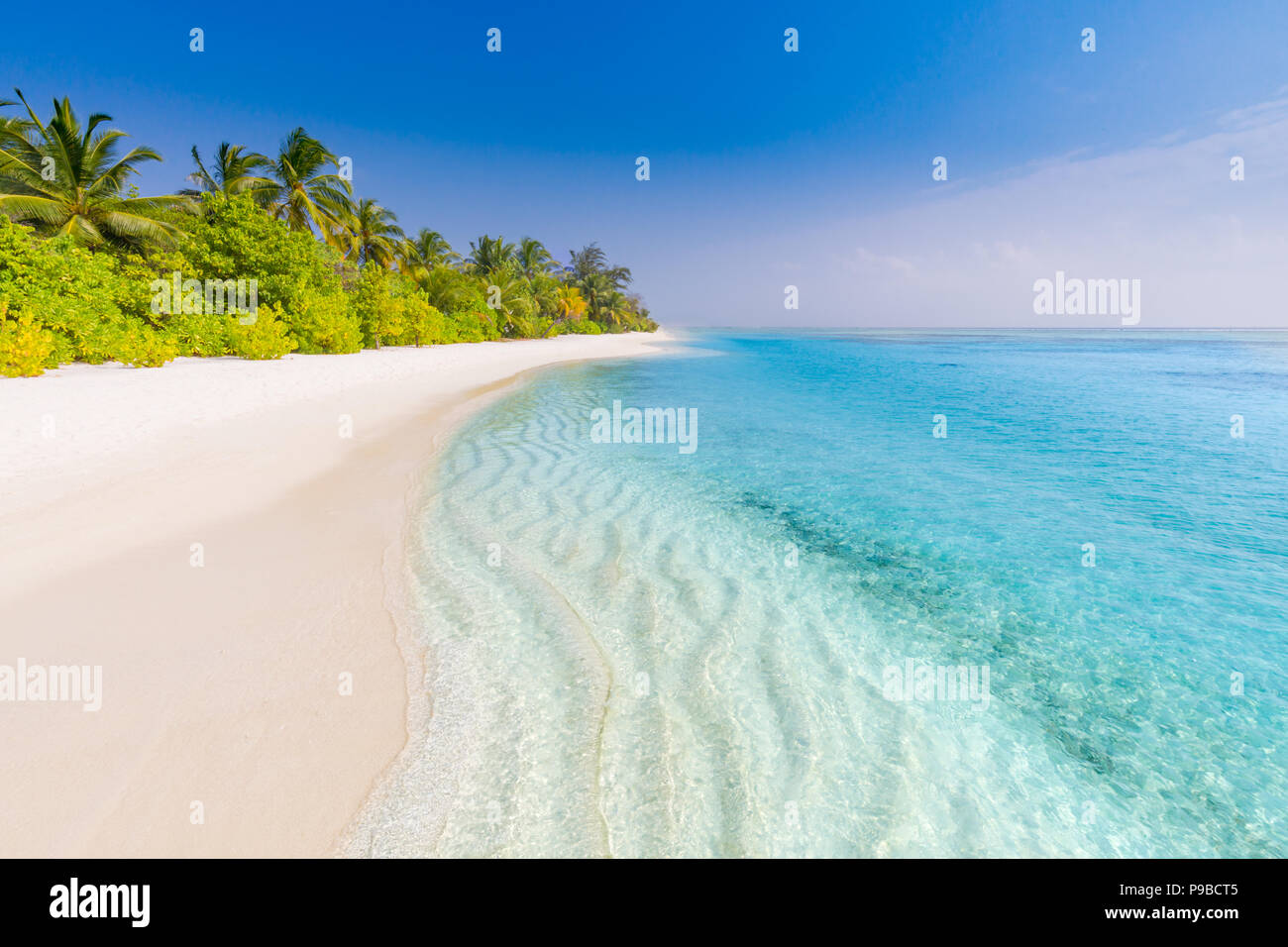 Beautiful beach with palm trees and moody sky. Summer vacation travel holiday background concept. Maldives paradise beach. Luxury summer  travel - Stock Image