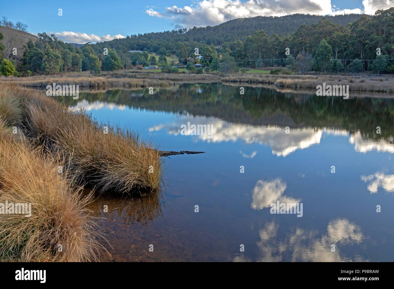 Reflections on the Snug River - Stock Image