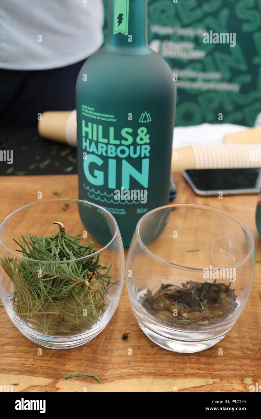 Bottle of Harbours and Hills Gin with two main botanicals of pine and seaweed in front of it - Stock Image