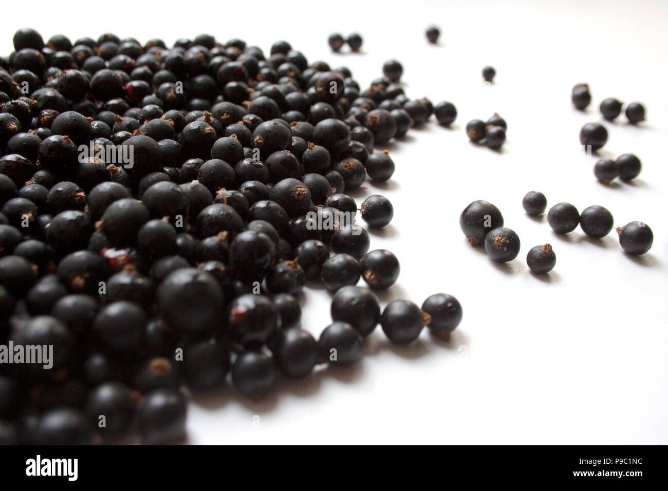 Heap of black currant berries isolated on white background close up Stock Photo