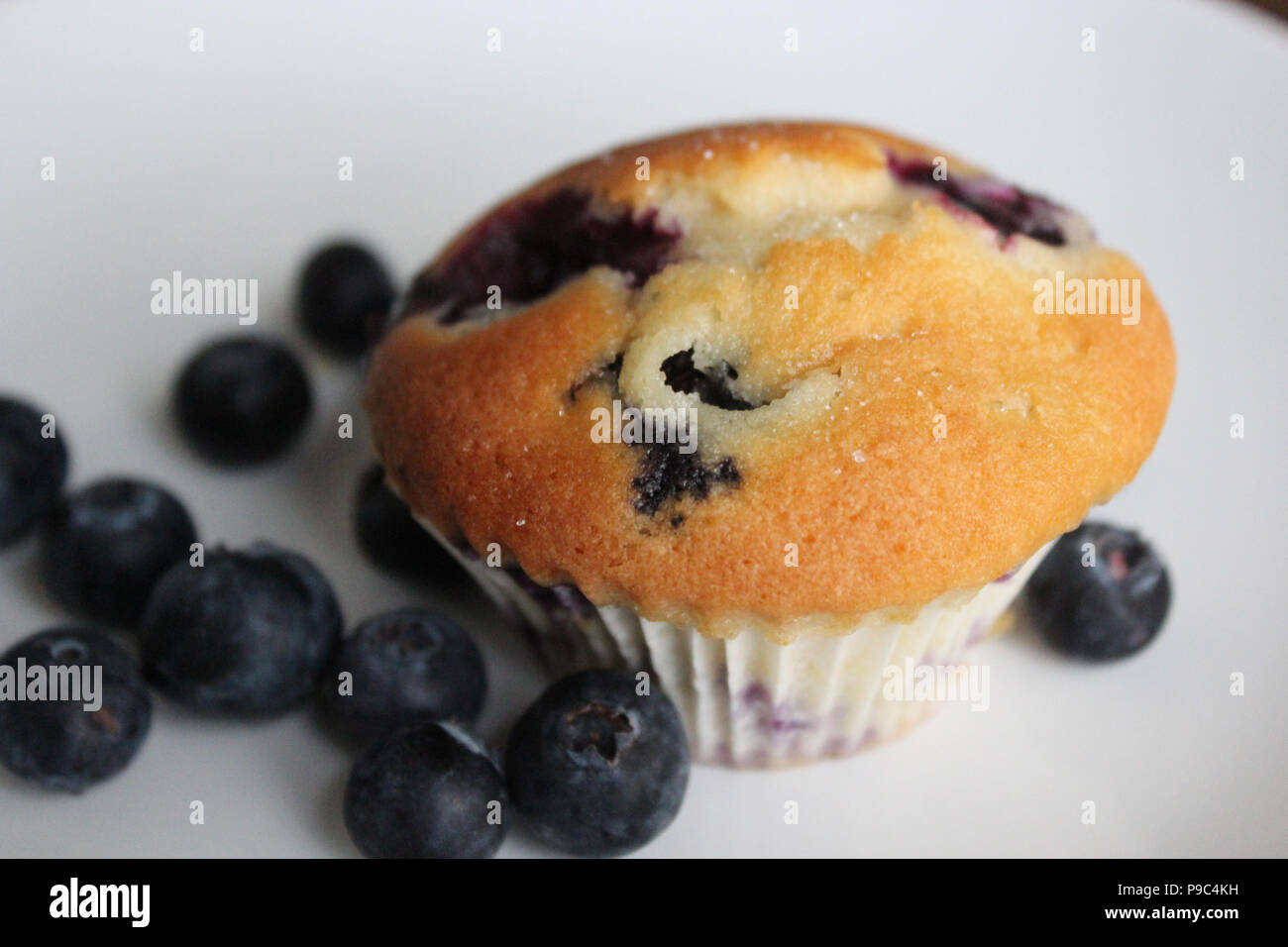 Homemade blueberry muffin - Stock Image