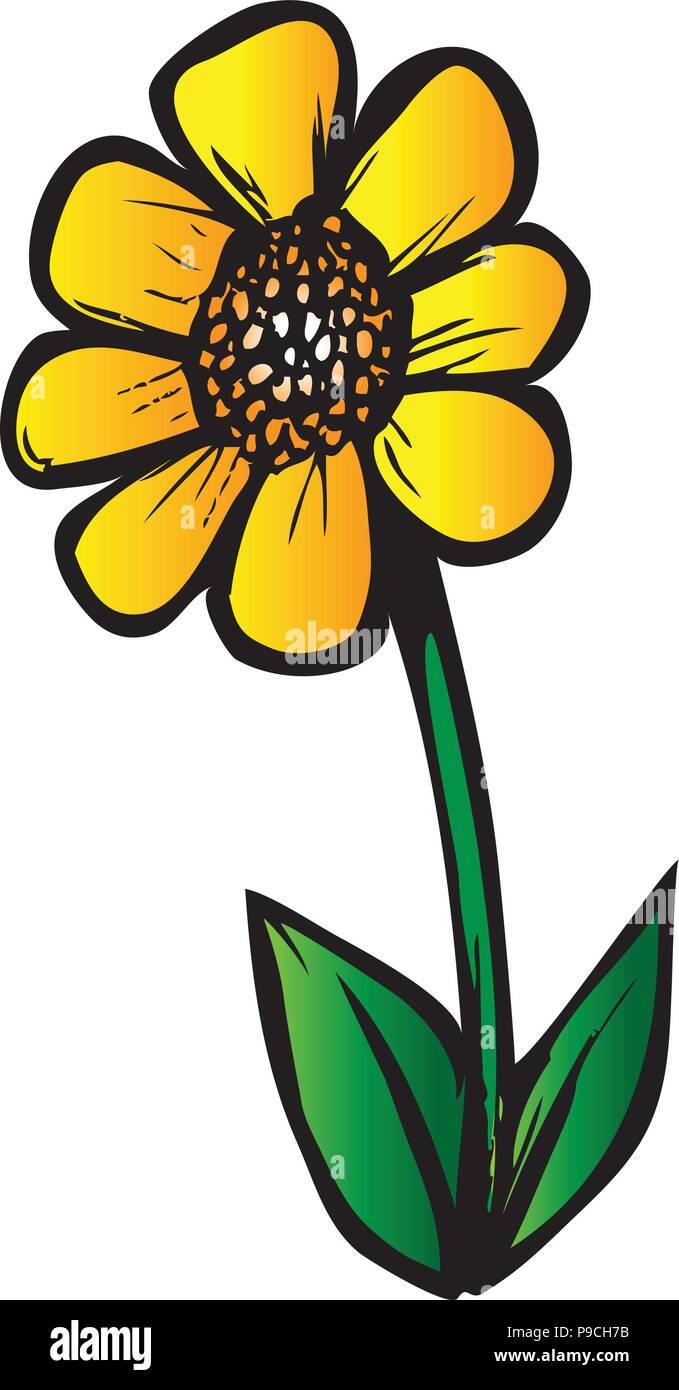 Cartoon Vector Illustration Of A Daisy Flower Stock Vector Image Art Alamy