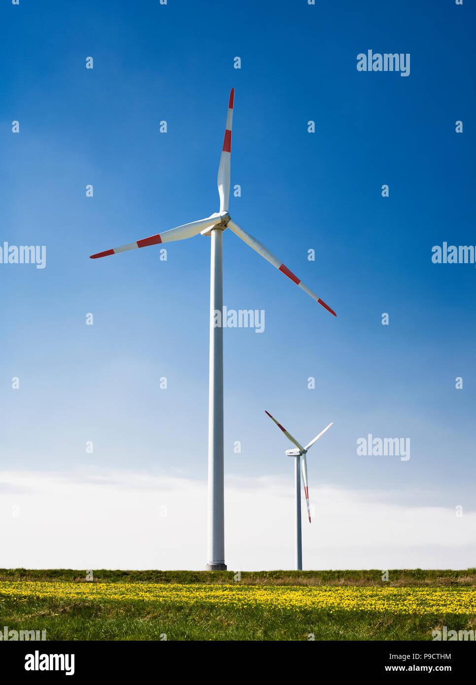 Windfarm wind turbine Schleiden Schoneseiffen in the Deutsch Belgischer Naturpark, Eifel region, Germany, Europe - Stock Image