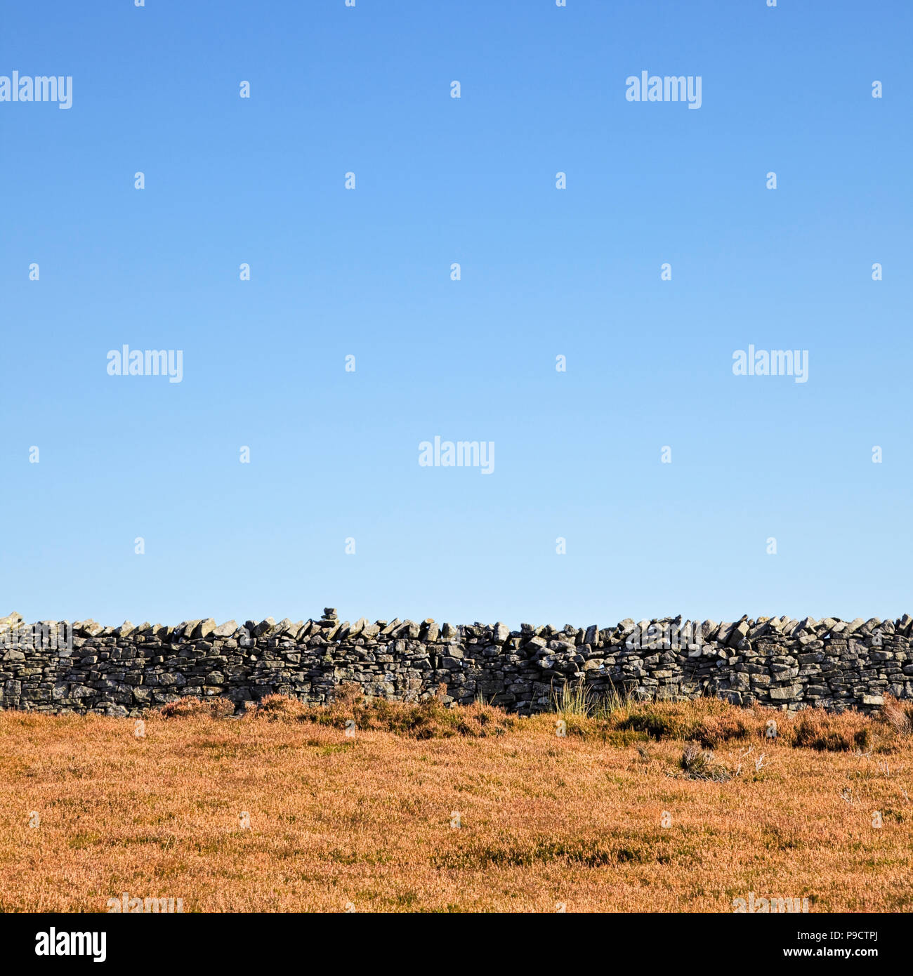 Traditional dry stone wall on the Yorkshire moors, England UK - Stock Image