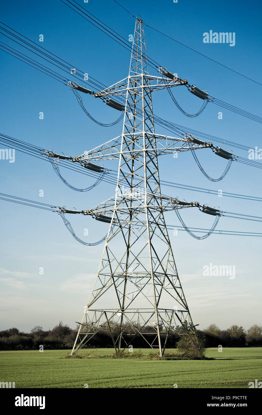 Rural countryside Electricity Pylon in a field of crops, England, UK - Stock Image