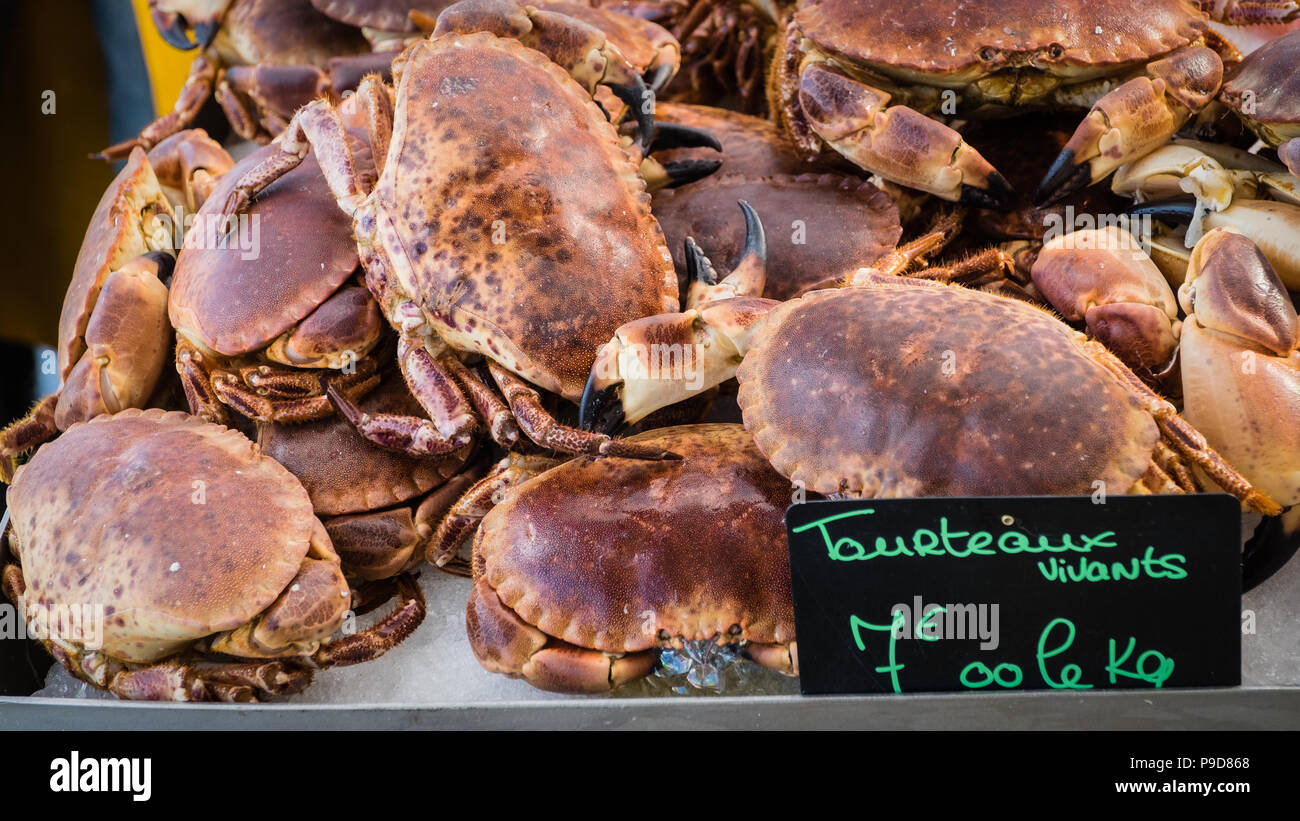 A bunch af crabs seen in a marketplace in France Stock Photo