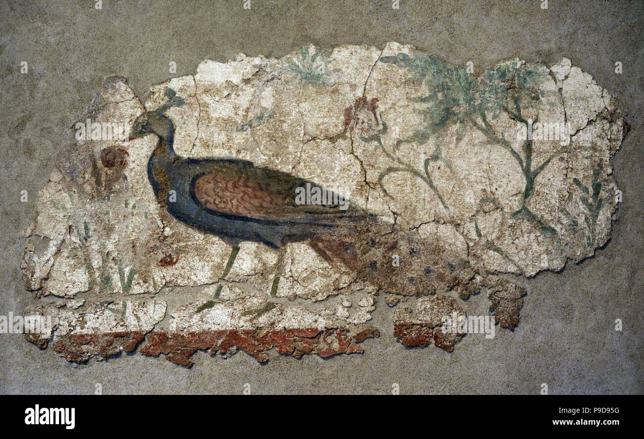 Roman Period Mural Painting 2nd 3rd Century Ad Peacock