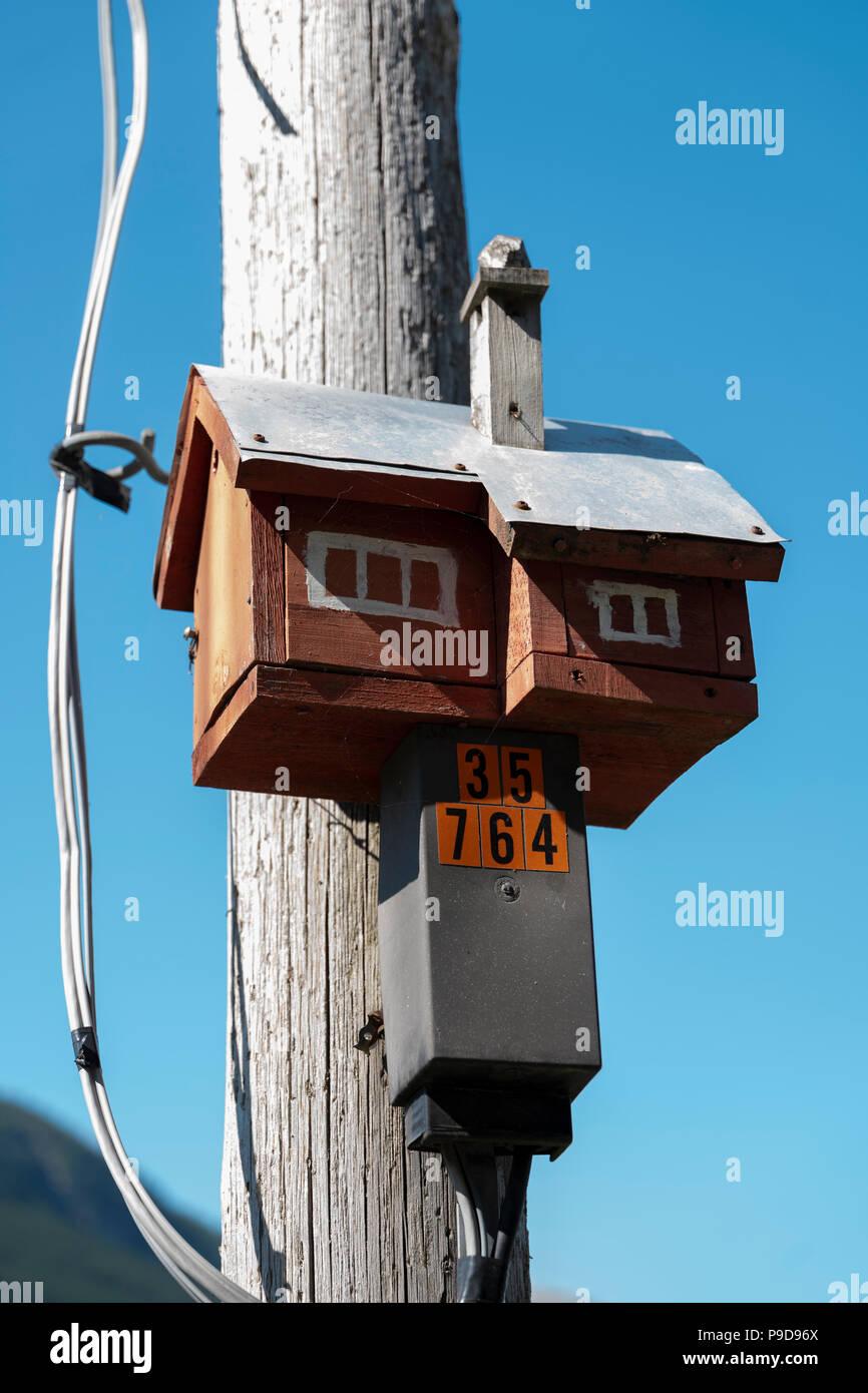 Unusual birdbox, Voss, Norway Stock Photo: 212348946 - Alamy