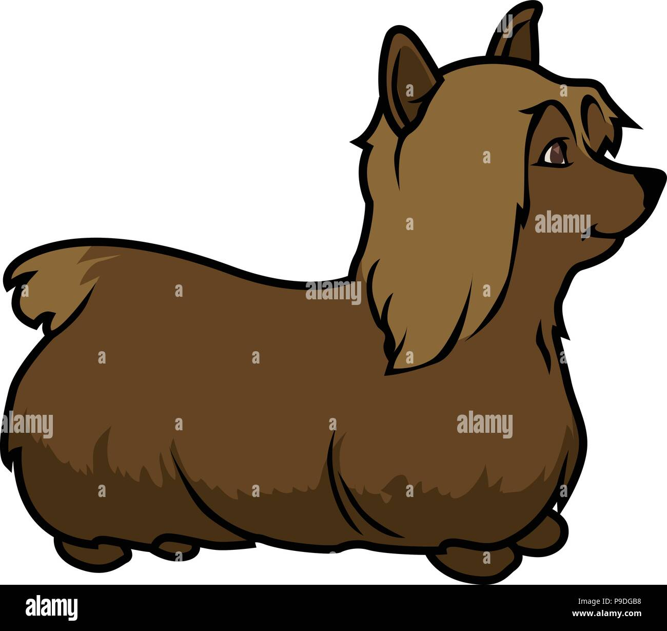 Pomeranian Or Pom. Cute Lovely Purebred Toy Or Lap Dog Of Spitz.. Royalty  Free Cliparts, Vectors, And Stock Illustration. Image 124954603.
