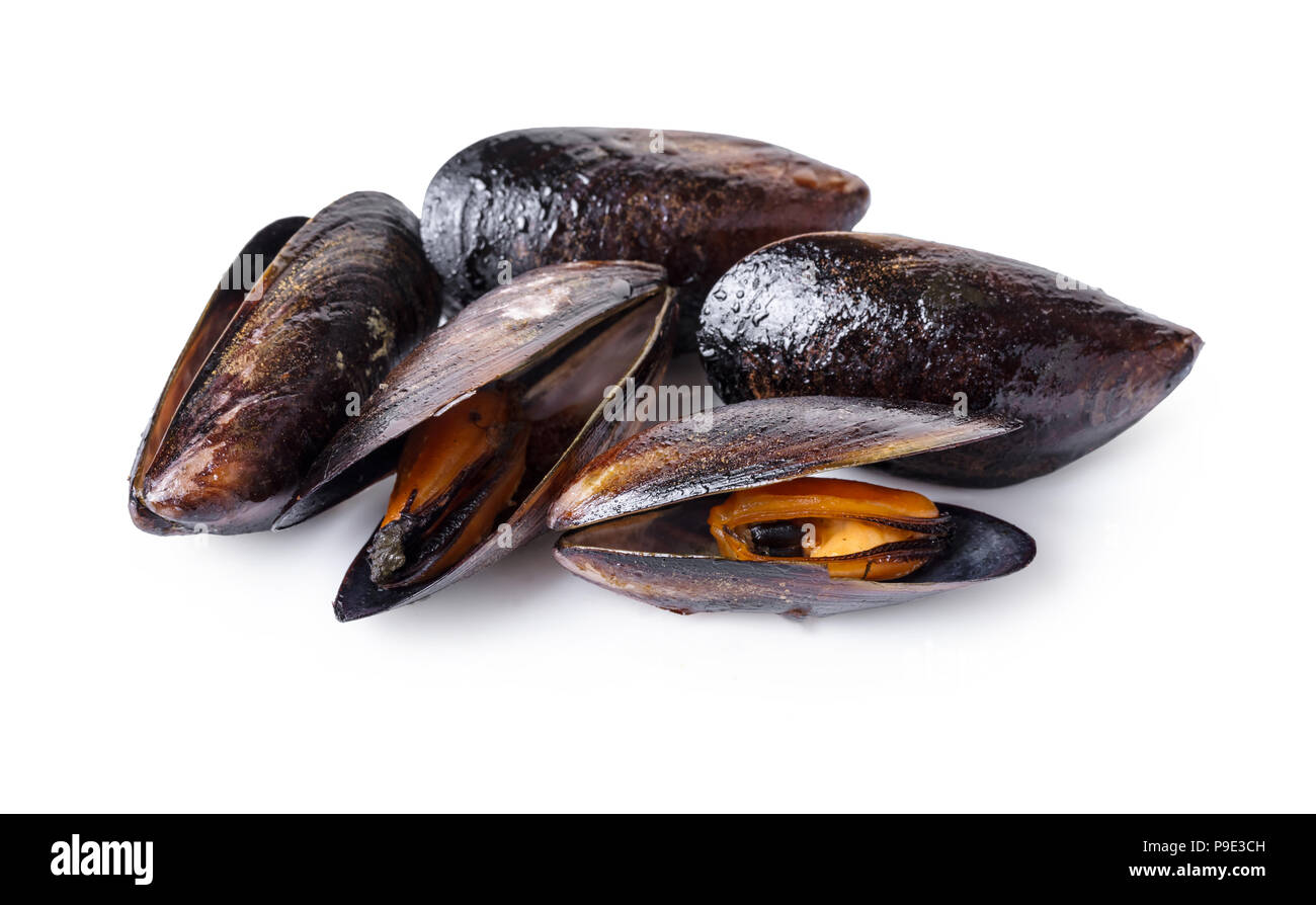 cooked mussels close-up on white isolated background - Stock Image