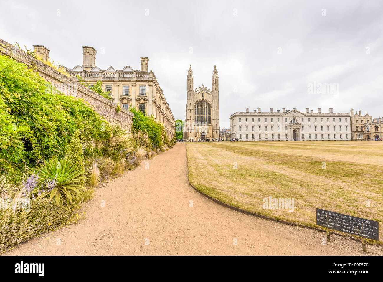 Path between Clare college and the Back lawn of King's college, university of Cambridge, England, leading to the latter's tudor chapel and its Gibb's  - Stock Image