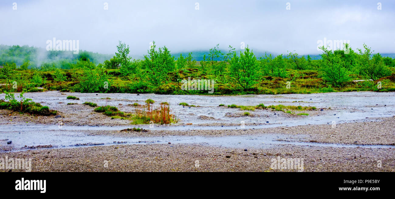 small stream in Iceland and trees and bushes - Stock Image