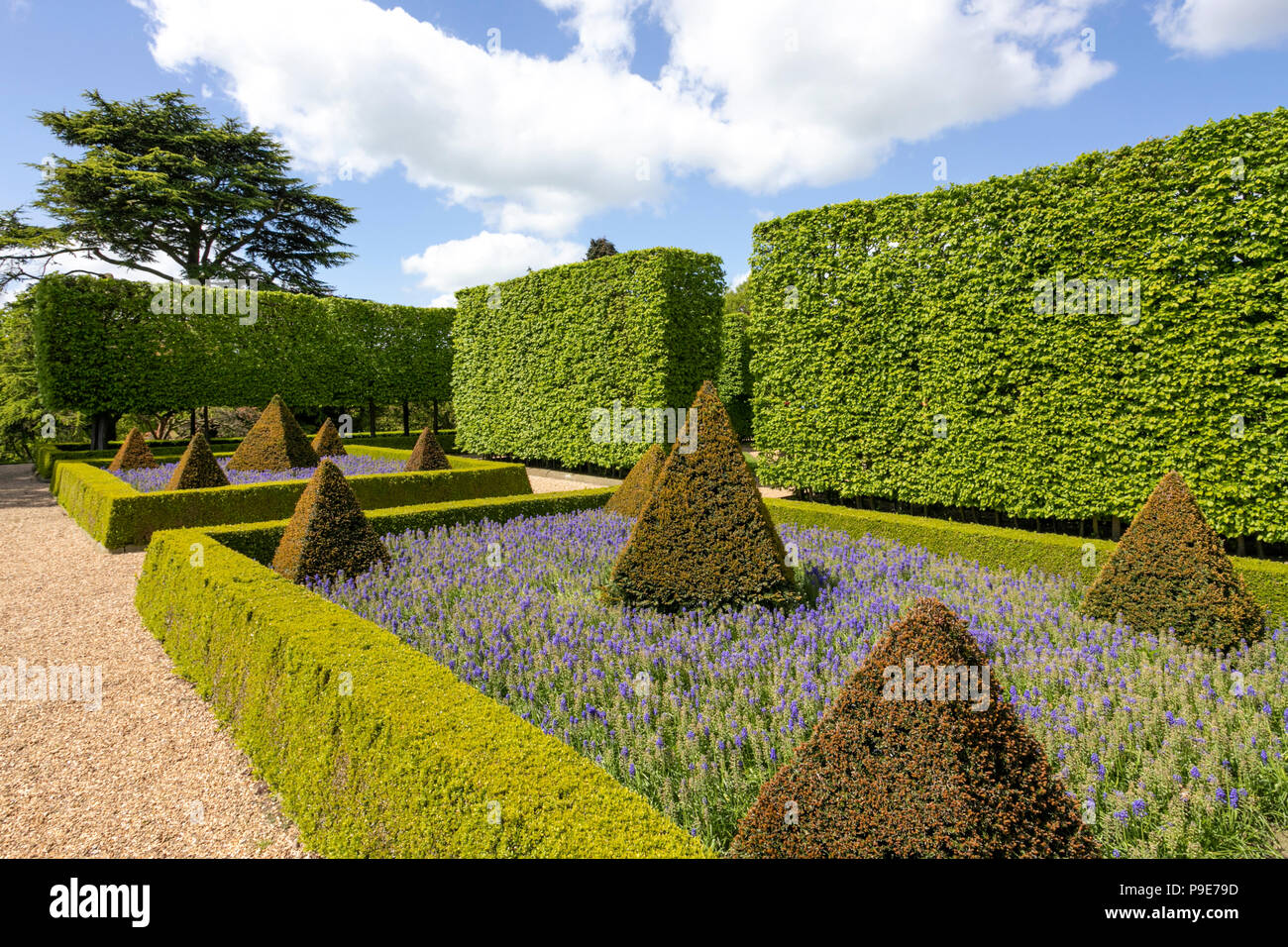 Part of the gardens at Harewood House near Leeds, West Yorkshire UK - Stock Image