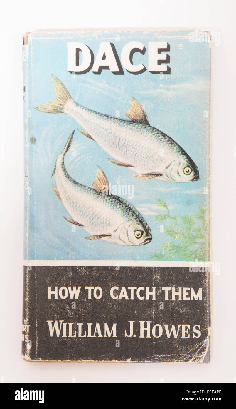 Dace How to Catch Them William J. Howes-How to Catch Them series. The How to Catch Them series of fishing books were published by Herbert Jenkins and  - Stock Image
