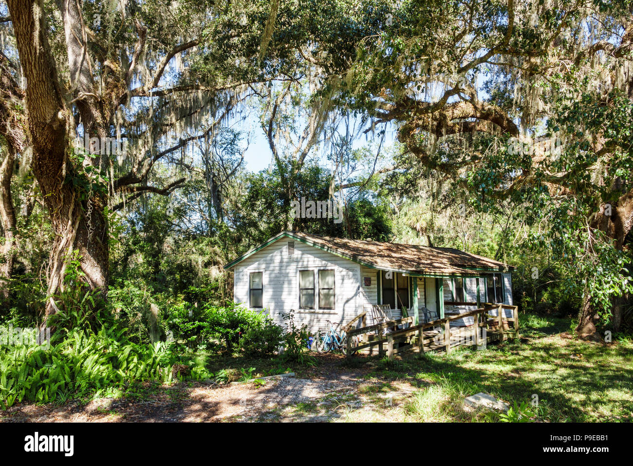 Florida Micanopy Small Town House Wood Frame Home Residence Live Oak