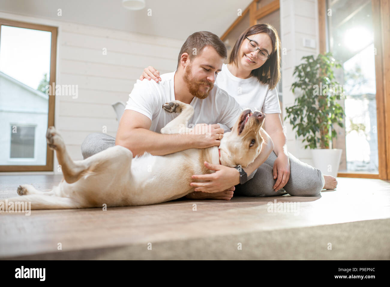 Couple with dog in the house - Stock Image