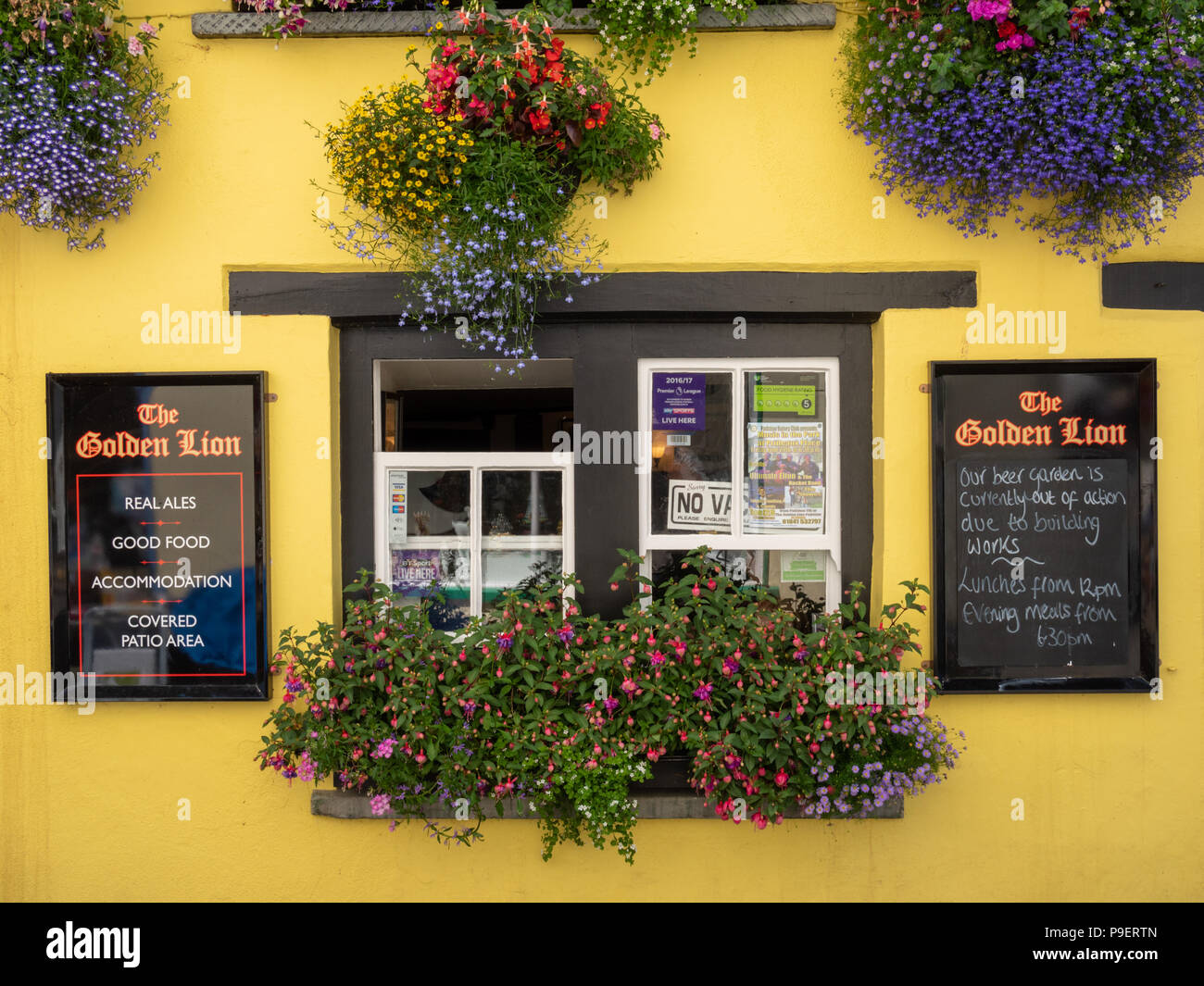 Beautiful window boxes and flower displays at the Golden Lion Hotel and pub in Padstow Cornwall UK - Stock Image