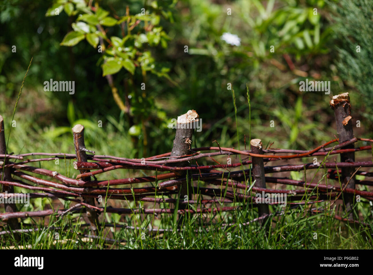 Wattle In The Green Garden Small Fence Made Of Weaving Thin Branches Stock Photo Alamy
