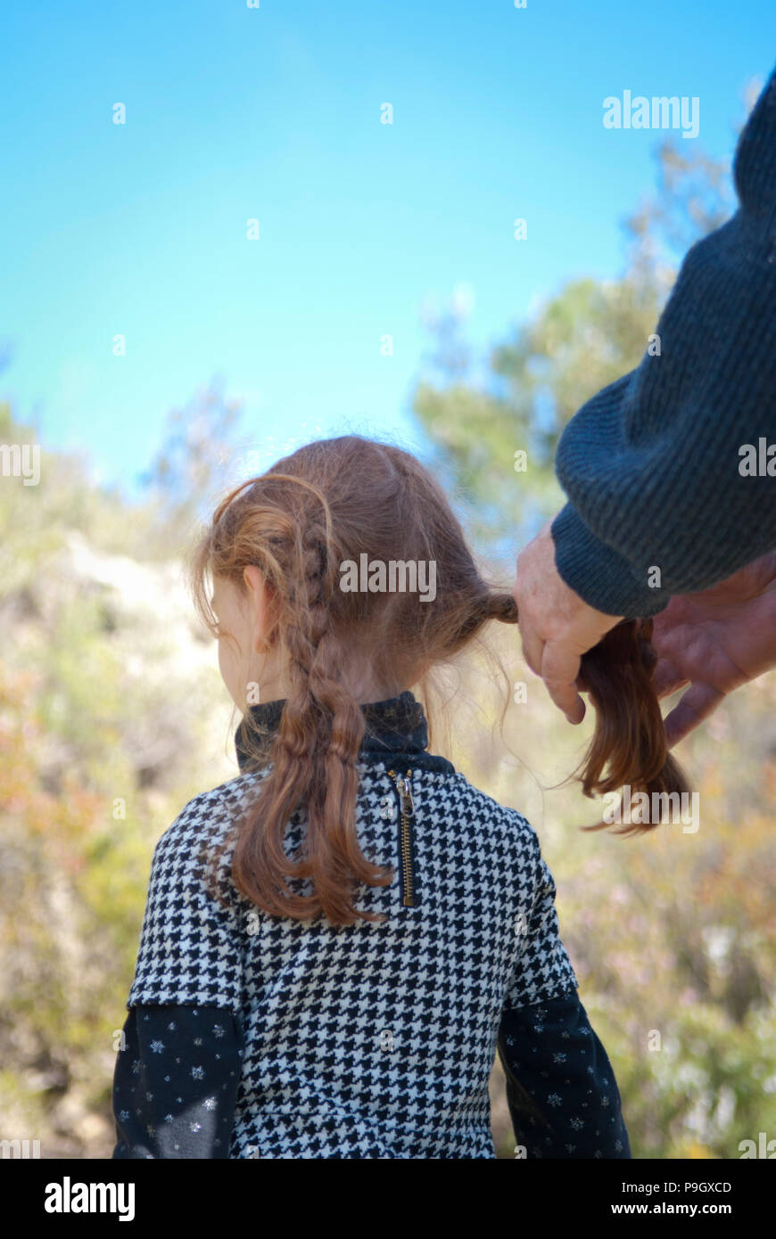 cropped view of a father plaiting his four year old daughter's red long hair outside with trees in background - Stock Image