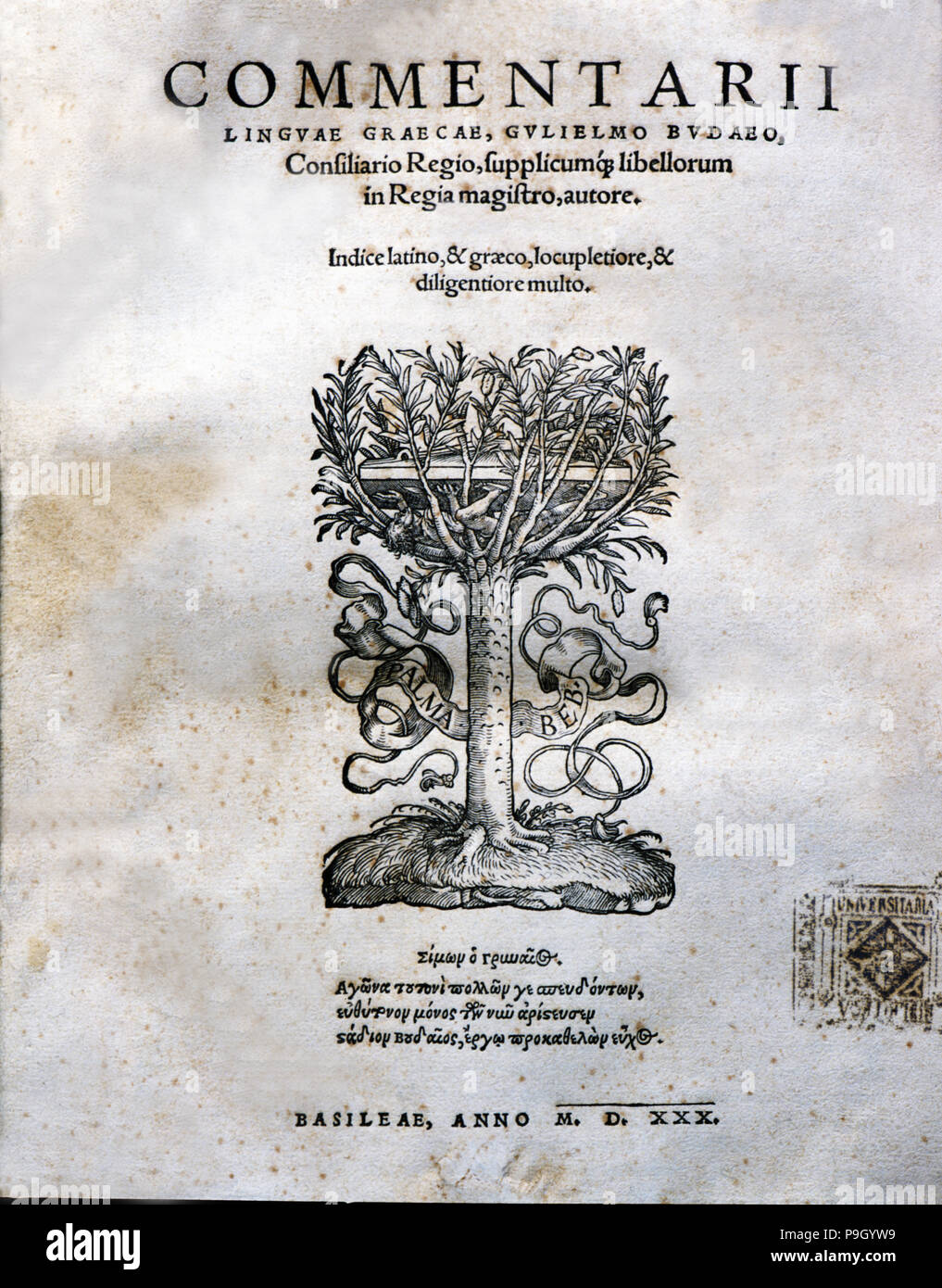 Commentari', comments in Greek language, cover of the 1530 edition of Basel. - Stock Image