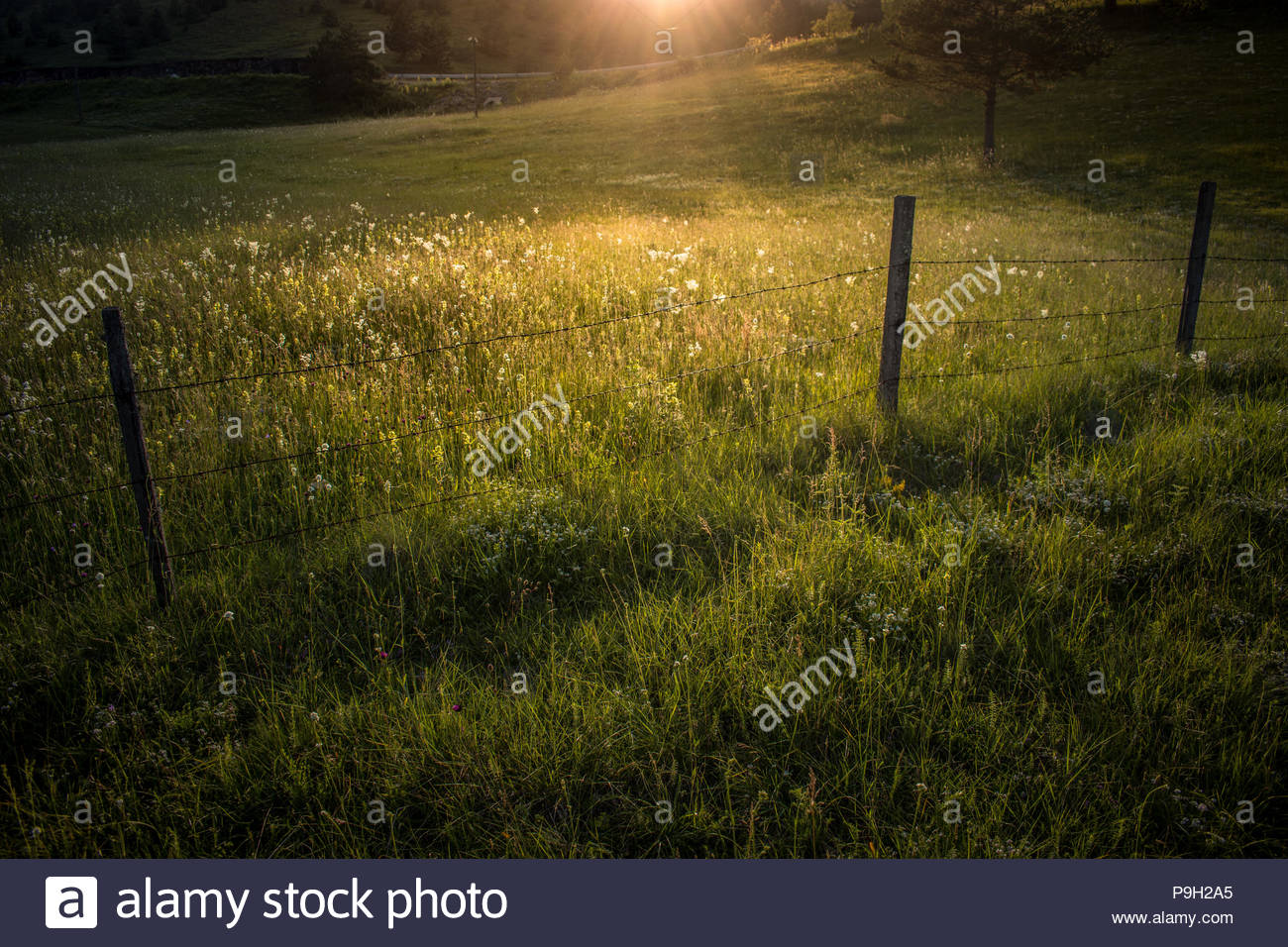Countrside , Serbia Stock Photo