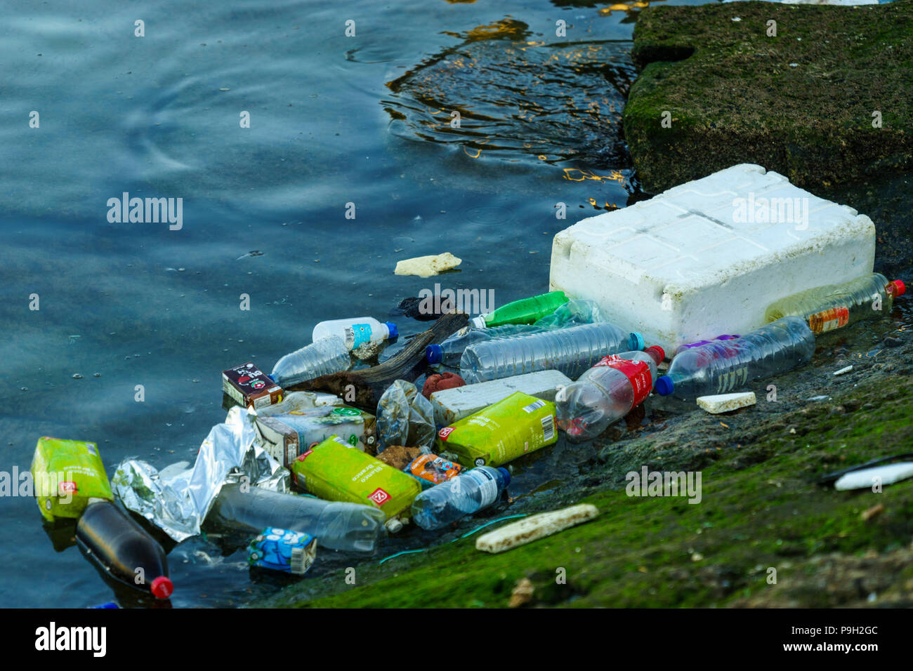 Discarded plastic waste floating on the edge of a harbour slipway contaminating the oceans - Stock Image