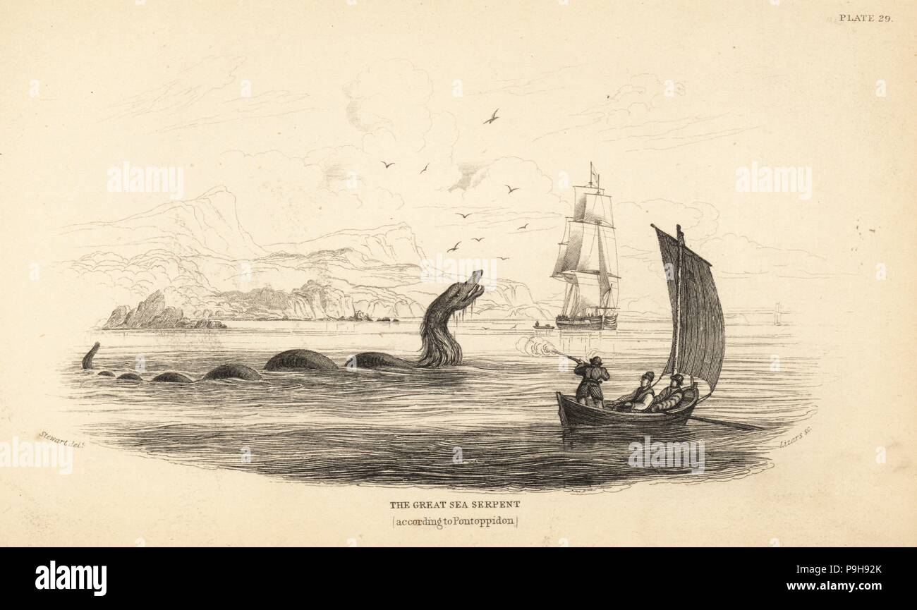 Great sea serpent shot at by the crew of Lawrence de Ferry in 1746. Described in Bishop Erik Pontoppidan's Natural History of Norway, 1752. Steel engraving by W.H. Lizars after an illustration by James Stewart from Robert Hamilton's Amphibious Carnivora, part of Sir William Jardine's Naturalist's Library: Mammalia, Edinburgh, 1839. Stock Photo