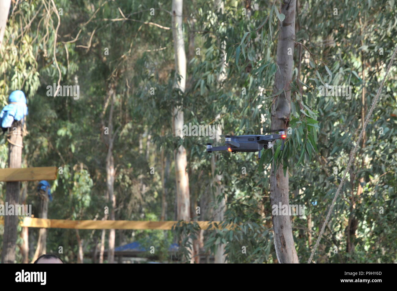 Remote control Quadrocopter, drone, with camera flying in a forest - Stock Image