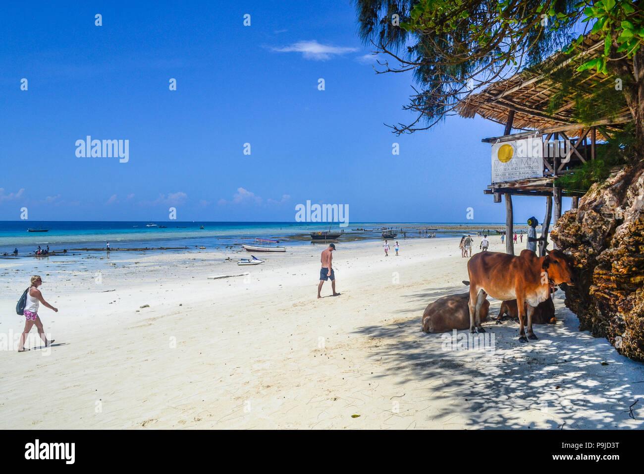 local life on paradise island Zanzibar - Stock Image