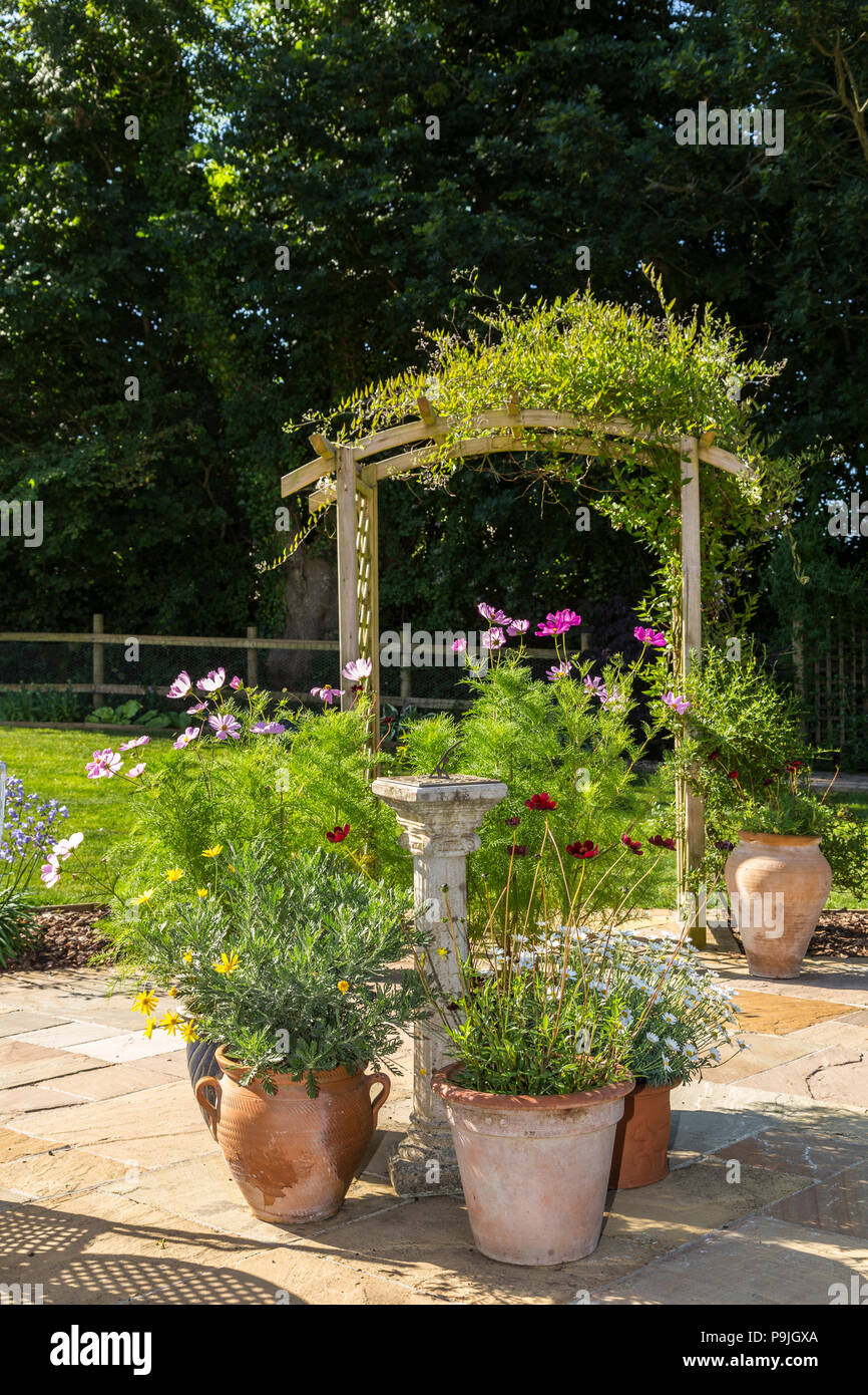Garden scene with table, chairs,pots of cosmos,chocolate cosmos,marguerites, and an arch covered in jasmine. - Stock Image