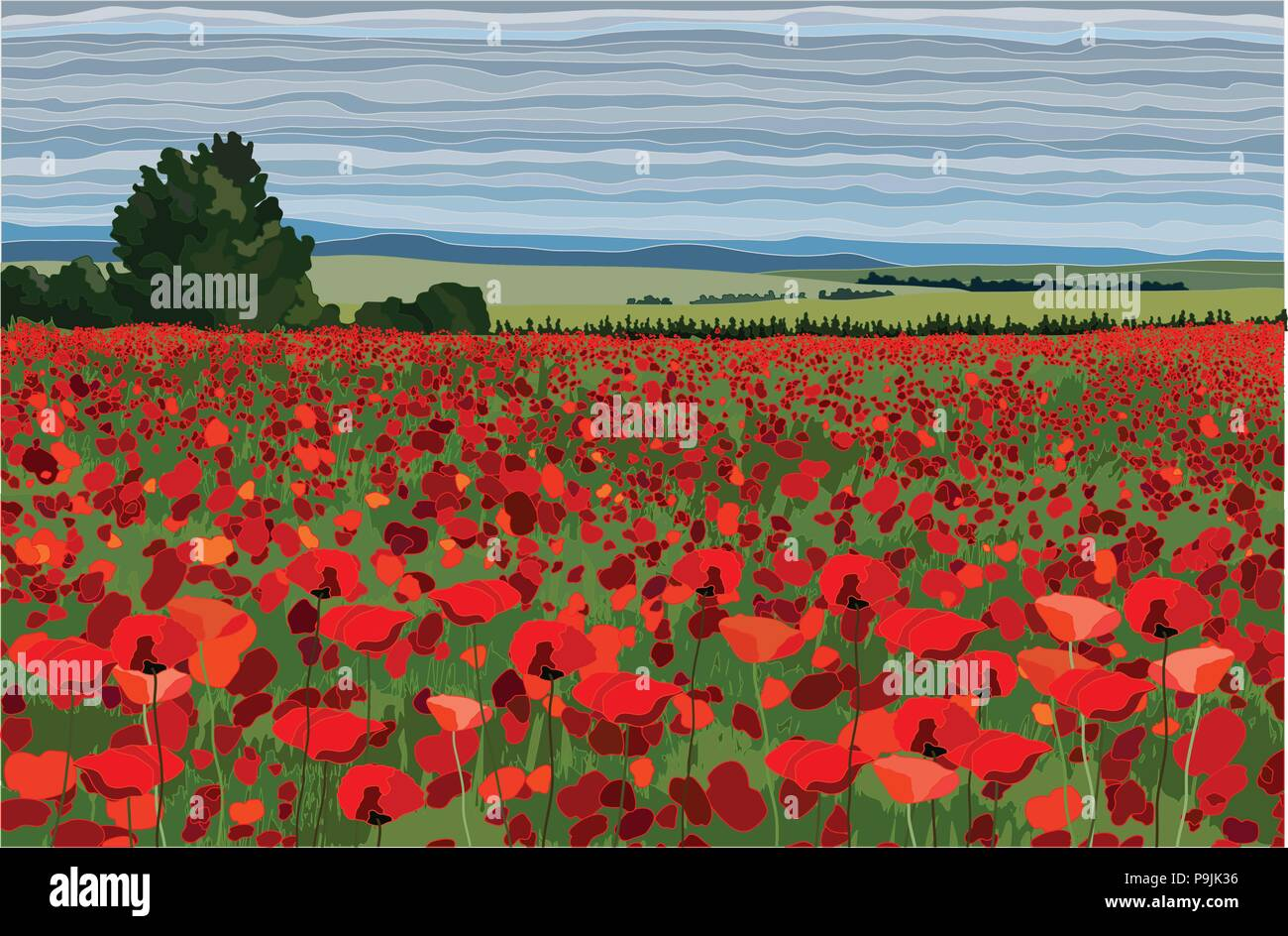 Bright poppy field with bushes, trees and blue sky vector illustration - Stock Vector