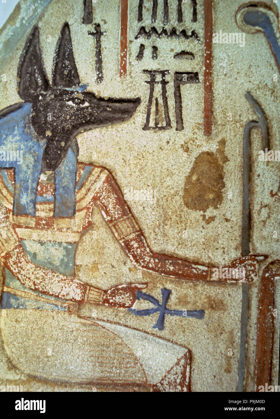 Detail of god Anubis in a familiar stela from a chapel of