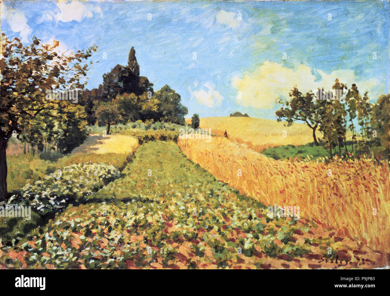 'Wheat Field', oil Painting by Alfred Sisley. - Stock Image