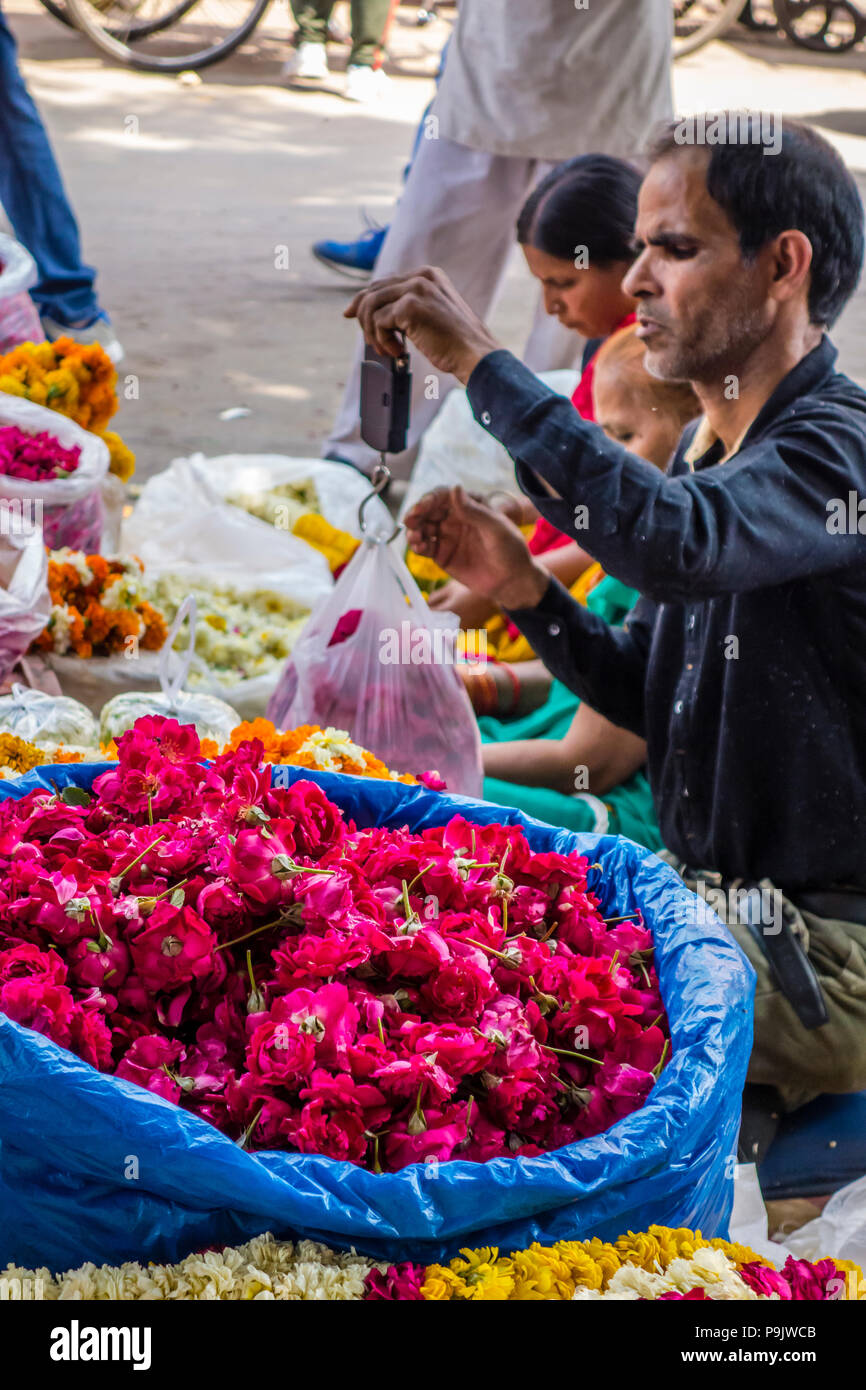 Indian flower vendor weighing flowers using a hand-held scale, Old Delhi, Delhi, India Stock Photo