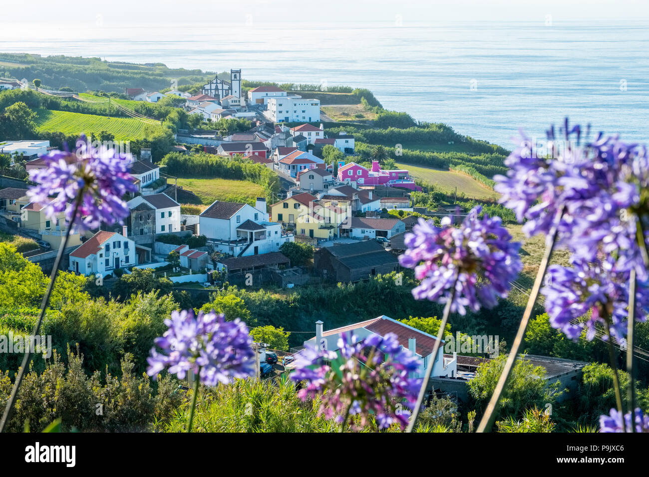 Typical scenery on the Azores ; wild flowers, village,sea. Sao Miguel, Azores - Stock Image